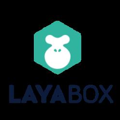 6445979 layabox 1602660451