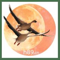 342580 chenjim 1634178141