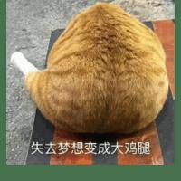 1056735 fengweiqiang 1578939264