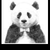 1406033 happy panda 1578950726