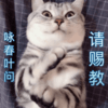2135969 zhouyun123 1585621797
